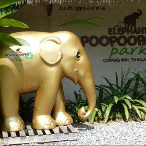清邁大象便便環保紙公園